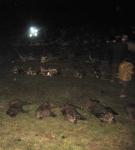 Finca la Canaleja Hunting